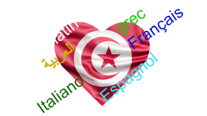 Sans titre 12 300x169 - LE DIALECTE TUNISIEN…UNE HISTOIRE DE SYNTHESE
