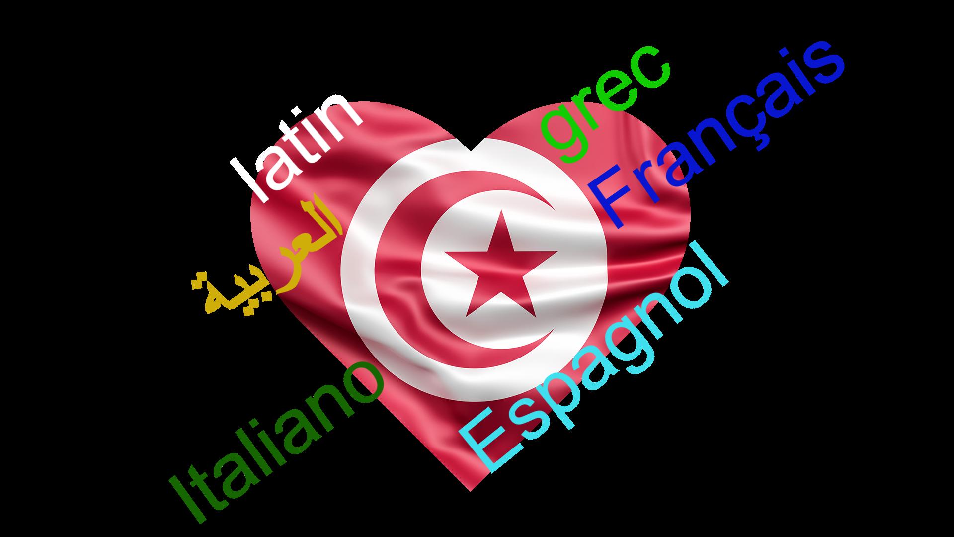 LE DIALECTE TUNISIEN…UNE HISTOIRE DE SYNTHESE