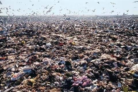 « Télématin »porte un éclairage sur le sort des déchets italiens découverts en Tunisie